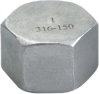 Picture of ANIX Stainless Steel CL150 NPT Hex Cap