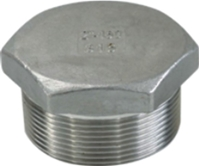 Picture of SS316 CL150 NPT Hex Plug