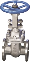Picture of CF8M Flanged Gate Valve ANSI 300