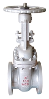 Picture of WCB Flanged Gate Valve Trim8 ANSI 300