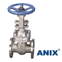Picture of ANIX Stainless Steel  Gate Valve Class 150 / 300 RF