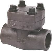 Picture of ANIX Forged Steel Check Valve Threaded Class 800